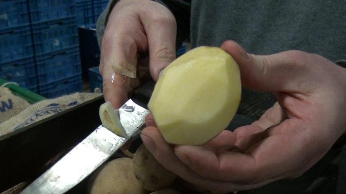 Poëtische Malta aardappel weer verkrijgbaar